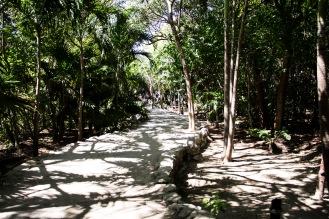 Camino a entrada de zona arqueológica Tulum